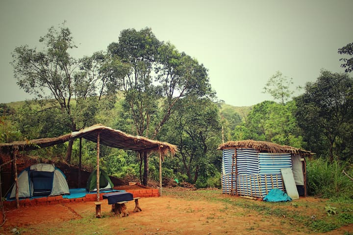 Tents..Trek..Trudge.. to a Distinctive place.. - Vandiperiyar - Tent