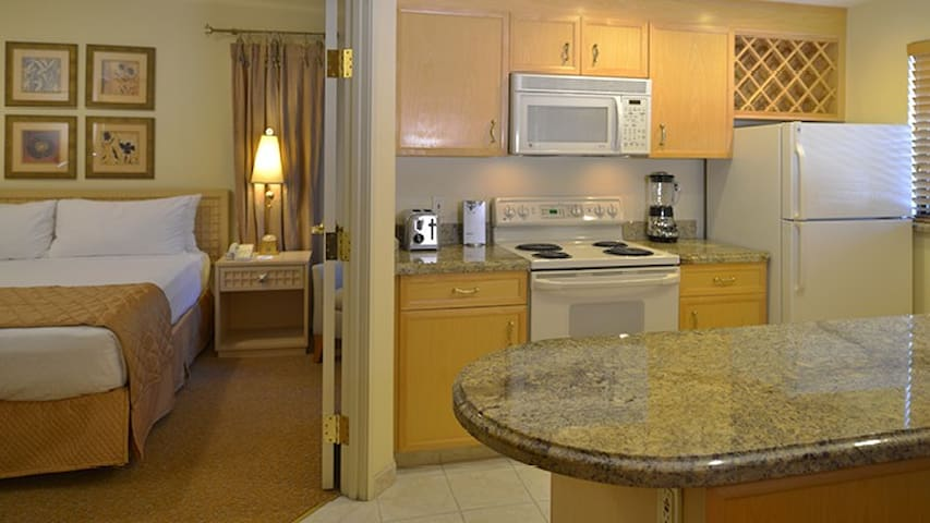1 BDR next to Aria/Paris Paris  Sleeps 4 w/kitchen - Las Vegas - Pis