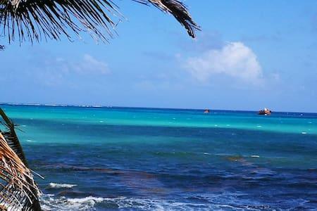 """Amazing Ocean View  """"BAHÍA""""   at Casa Corales"""