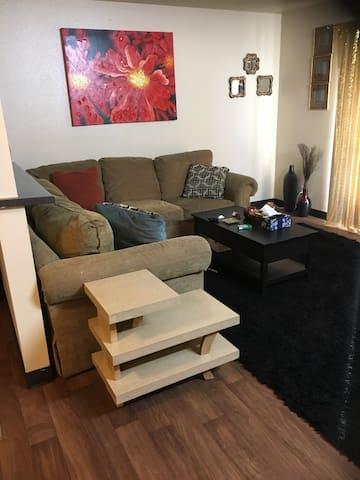 Large comfy living room - Sacramento - Apartamento
