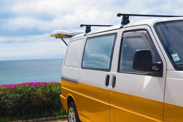 Mustard - Spicy Beach House
