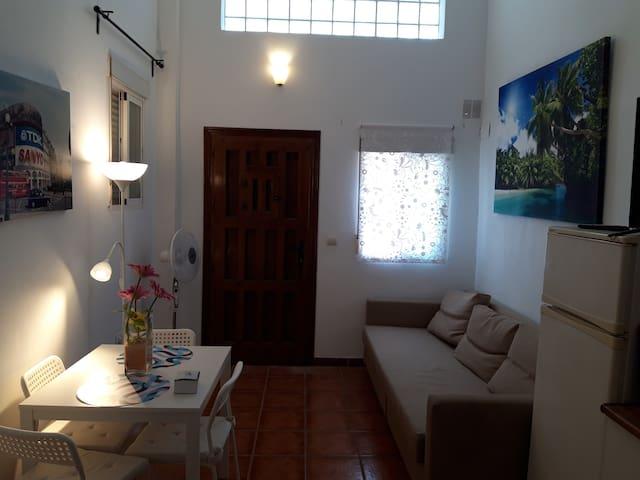 Amplio apartamento Loft ideal familias en Arroyo