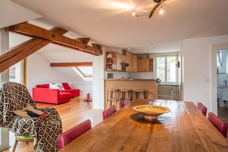 160 Amazing apartment in Lausanne center - Losanna