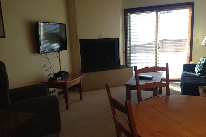 Living room with gas fireplace, flatscreen TV, sofa (hideaway)