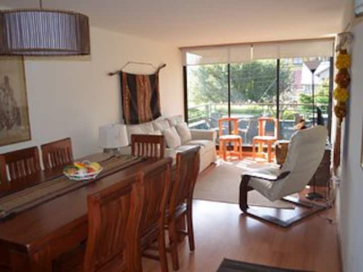 Very nice apartment ,the best location in Pucon.