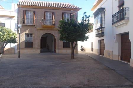 Casa señorial en el centro de Écija - Écija