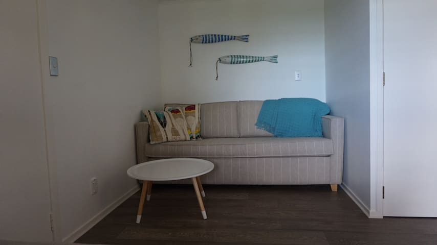 TV room / pull out queen bed