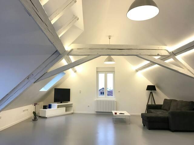 Jolie chambre dans loft - Wolfisheim