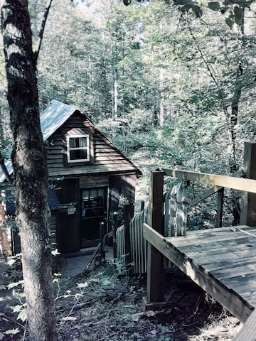 The cabin entrance. You walk a short way through the woods, onto a plank walkway, then down the stairs to the front door.
