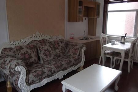 崇礼近万龙和长城岭滑雪场精装酒店式公寓 - Zhangjiakou Shi - Leilighet