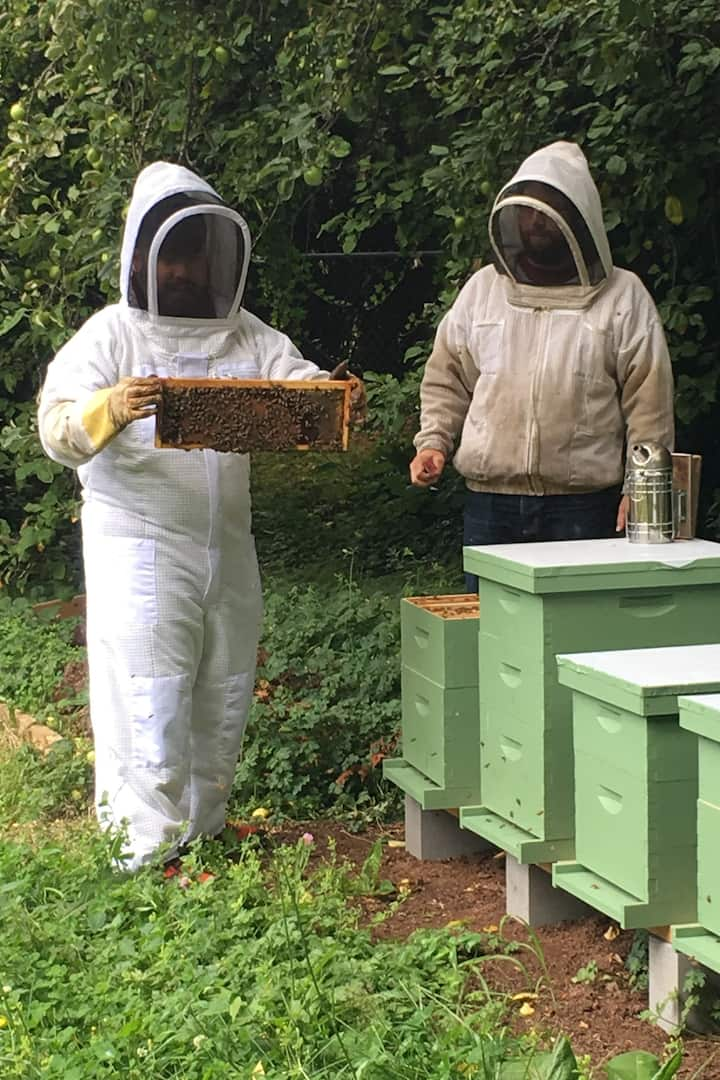 Holding a frame of bees!