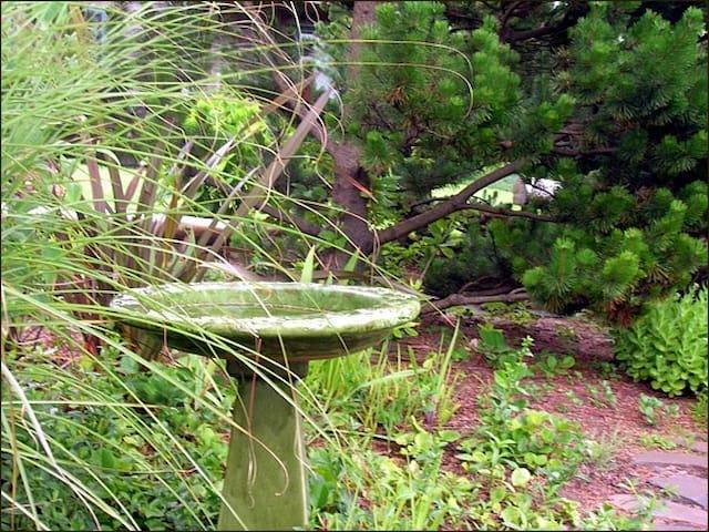 Hummingbird-Manzanita  King/Pet FriendlyMCA#15-068