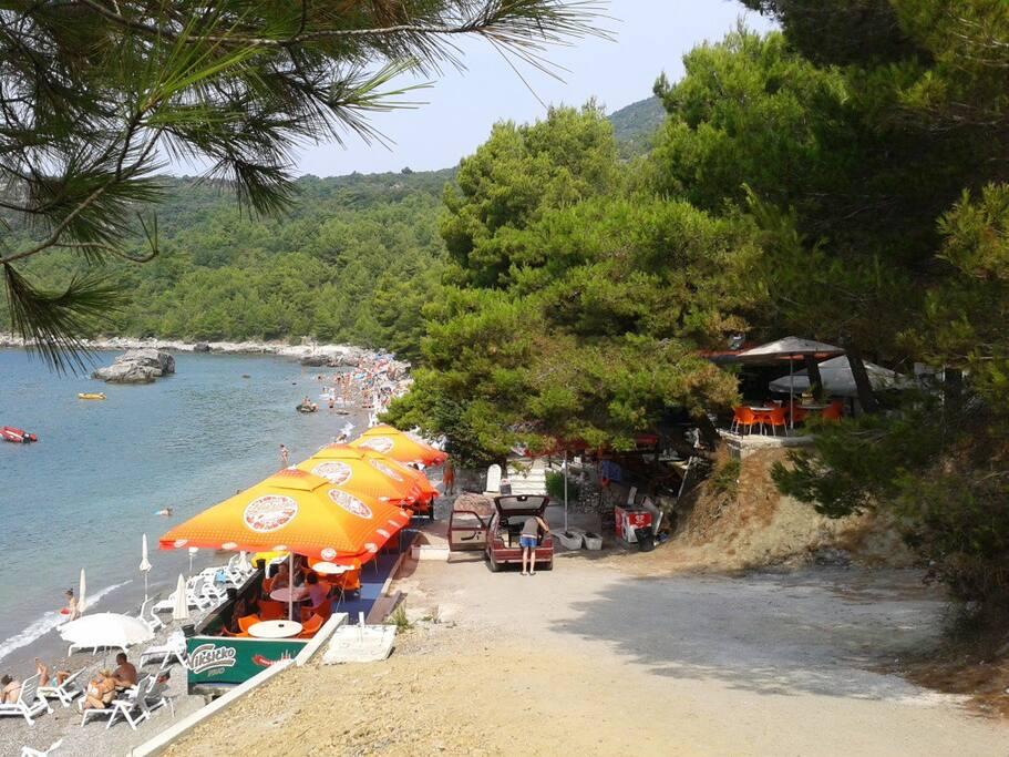 Пляж Малевик в соснах, кафе