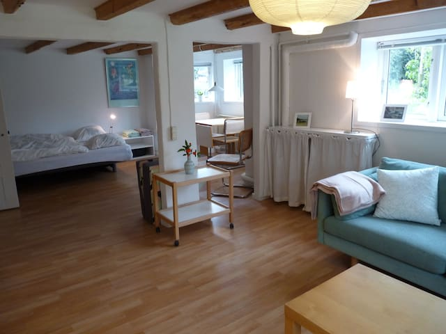 Bright 45 m2 flat (basement), 3 km to city centre - Aarhus - Villa