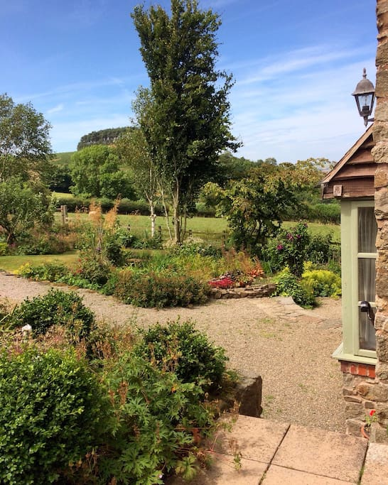The view from Curlew Cottage
