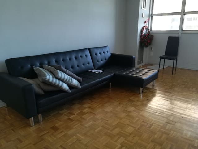 Sofa-bed in the living west of Toronto