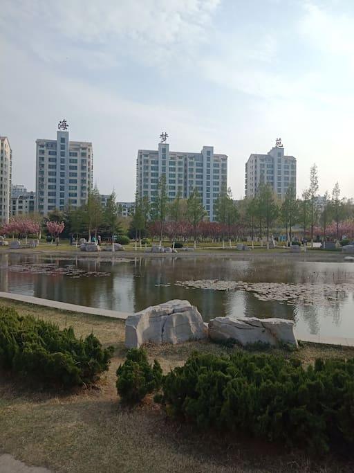 小区是高档社区,紧邻绿洲公园。
