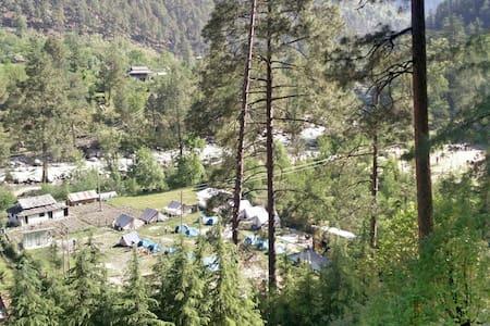Parvati woods camps - Trip to kasol - Kasol - Zelt