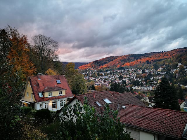 Cozy Heidelberg Hilltop Retreat