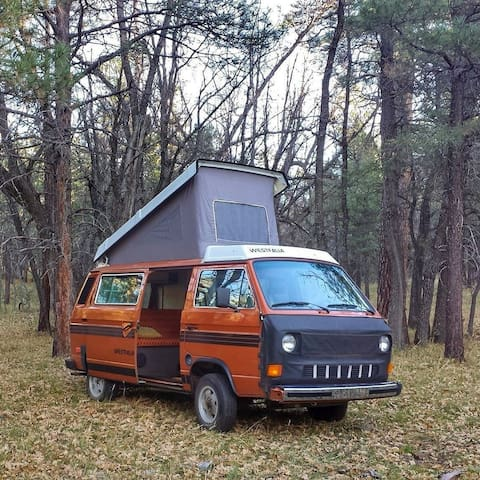 Way Out Westy~ FULL camp setup and more
