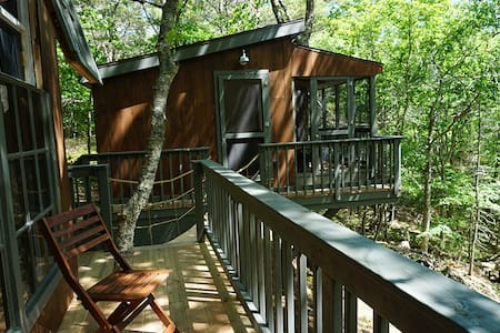 Tree Dwelling with Water Views (I)