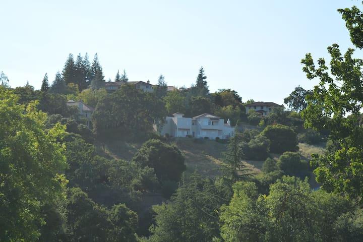 Cesium Hacker House 5 - Los Altos Hills - Villa