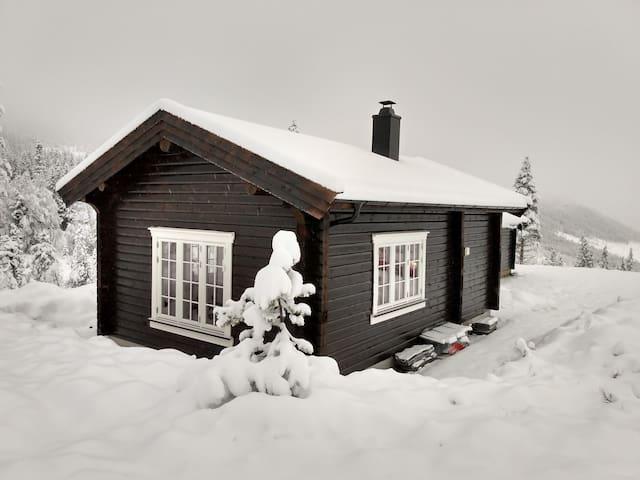 Fullstandard hytte i flott turterreng
