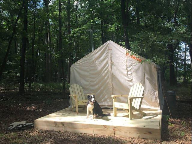 Tentrr - Camp Toasty Marshmallow