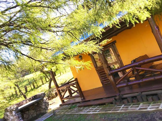 Cabaña Duplex con cuatro hectáreas de bosque