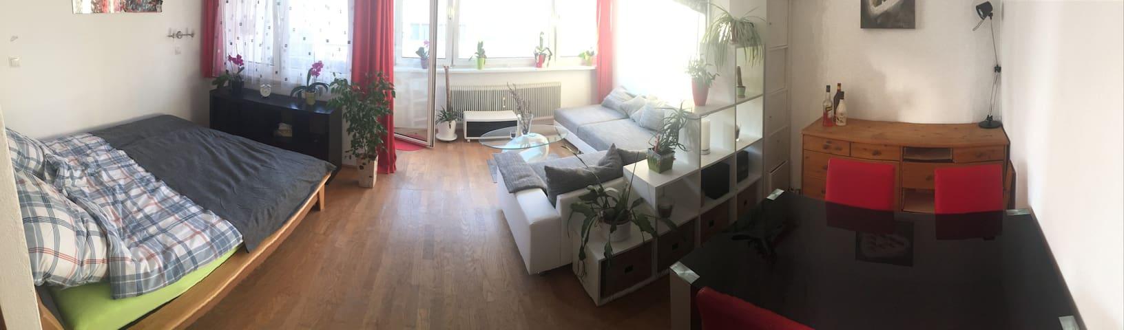 Wohnung Elizabeth - Salzburg - Lägenhet