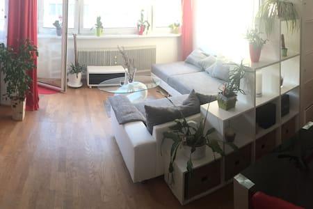 Wohnung Elizabeth - Salzburg - Apartemen