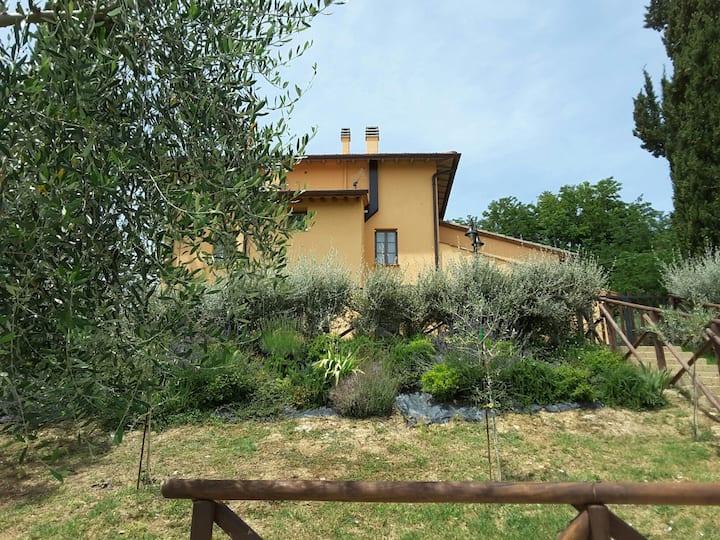 "apartment near S.Gimignano""Le Volte"" apt in relax"