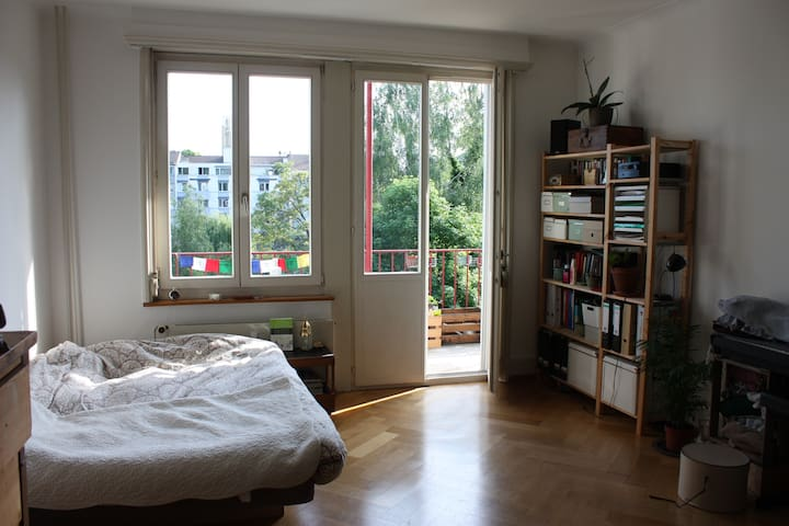 Spacious and well-located room for Basel World - Basel