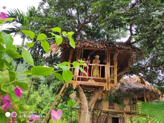 Pu luong Discovery Private Tree Bungalow 1 night