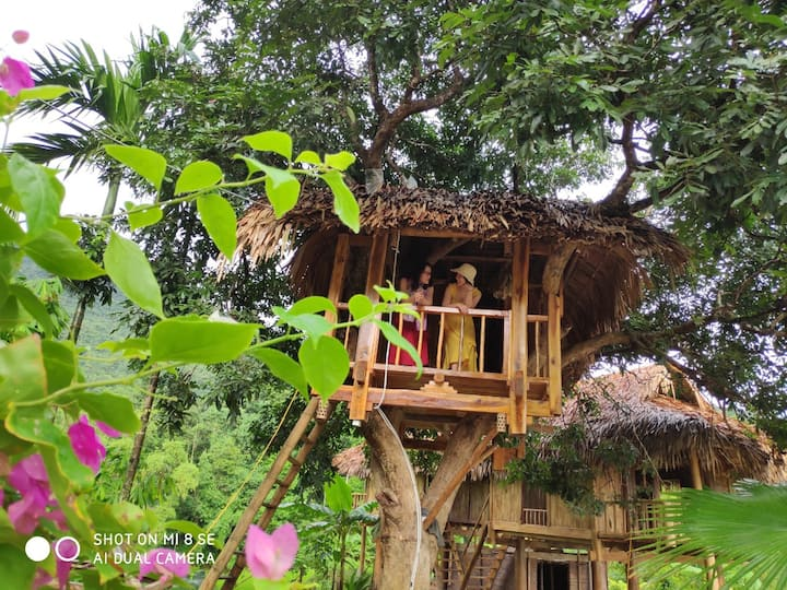 Pu luong Discovery Private Tree Bungalow