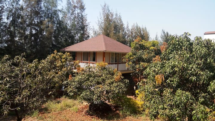 """ Tree House ""Cottages in Mulshi"