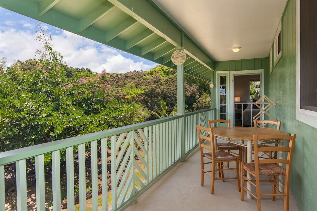 1st lanai with door to master bedroom at far end