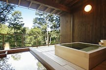 1 hour 27 mins to Arima hot spring by train