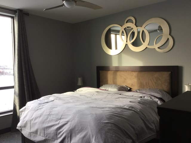 Large, luxurious one bedroom apartment - Thunder Bay - Apartment