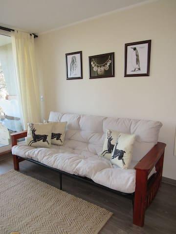 Cómodo y confortable departamento en Pucón
