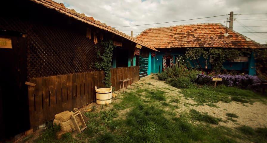 Romanian traditional house- small village Salaj