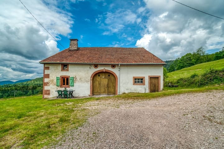 Beautiful Holiday Home near Forest in Vagney