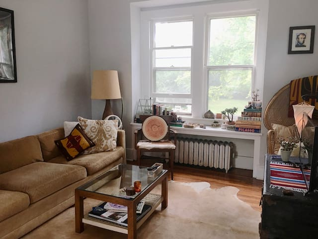 Unique and Artsy 3BR Home near Ferndale & Detroit - Pleasant Ridge
