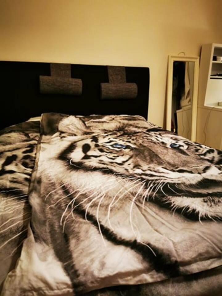 Fint övernattningsrum i fräsch central lägenhet