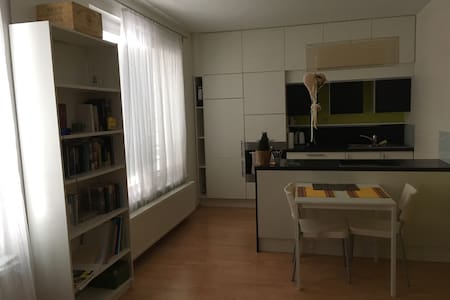 Spacious studio, sleeps 2 - Prag - Lägenhet