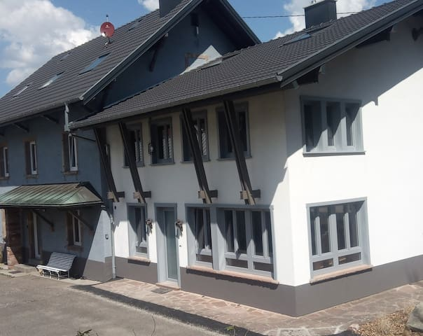 La villa du Pt-Ballon 160 m² 4 ch 2 sdb sauna bbq