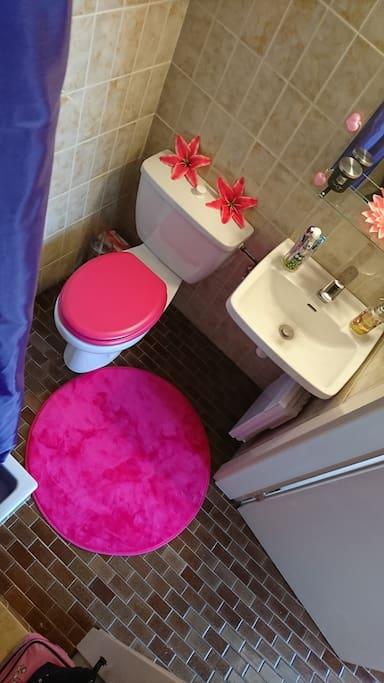 À disposition: serviettes de bain et visage, gel douche, shampoing, après shampoing, lait corporel, cotons tiges, carrés visage, dentifrice, papier WC.