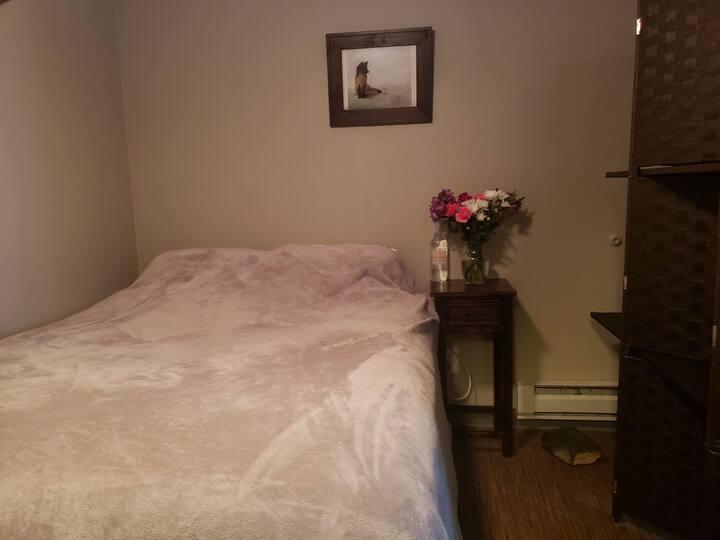 Cozy Living Room Space w Comfy Queen Bed