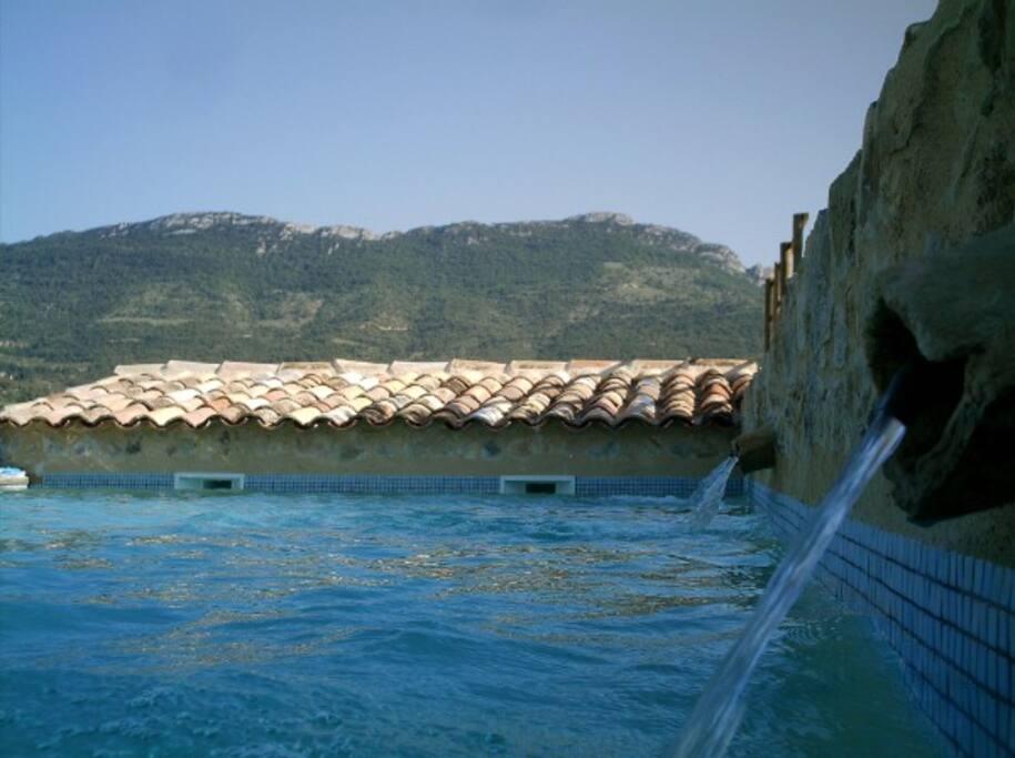 La piscine 10 m x 5 m