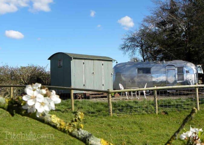 Ludlow Vintage Airstream - Ludlow - Bed & Breakfast
